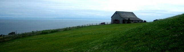 cropped-hillside1.jpg